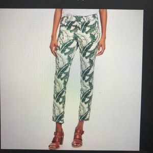 Old Navy Tropical Palm Print Pixie Pant Size 10